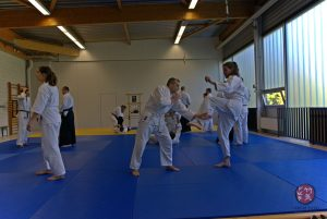 20171014 Workshop Takeki Dojo Lauterbourg 17 300x201 - Lehrgang 14.10.2017, Lauterbourg